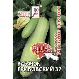 200 Кабачок Грибовский 37 4г.